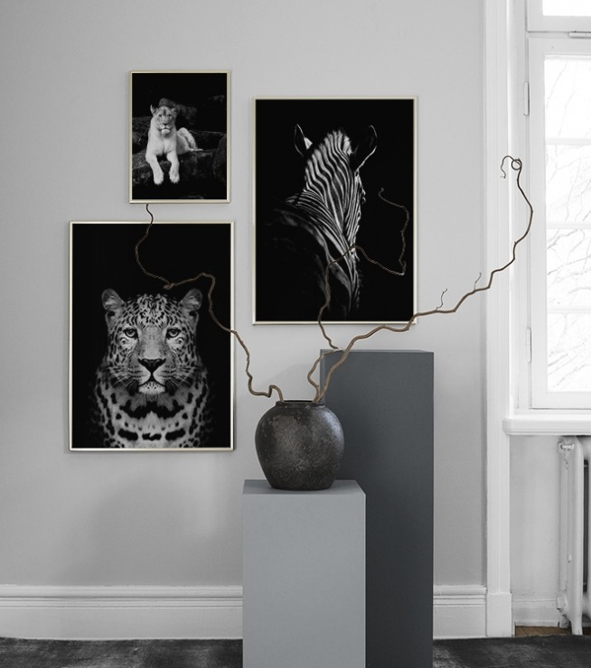 animals-gallery-wall